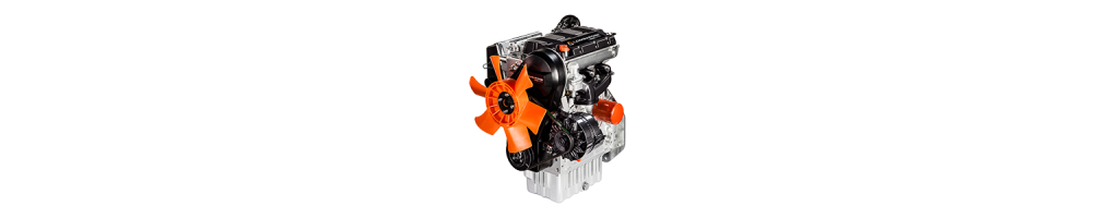 Spare parts for LDW FOCS Marine Lombardini engines | Online store |  Comercial Méndez