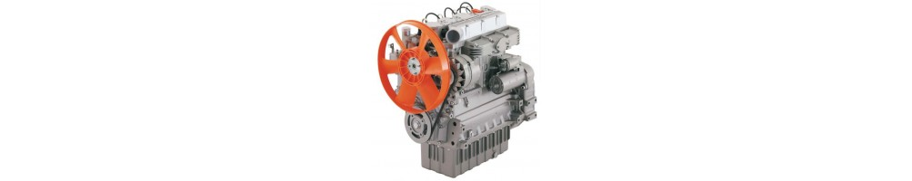 Spare parts for LDW CHD Marine Lombardini engines | Online store |  Comercial Méndez
