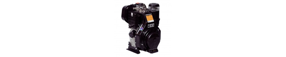 Spare parts for Lombardini 3LD Series engines | Comercial Méndez