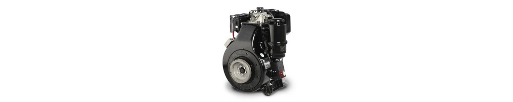 Spare parts for Lombardini 4LD series engines | Comercial Méndez